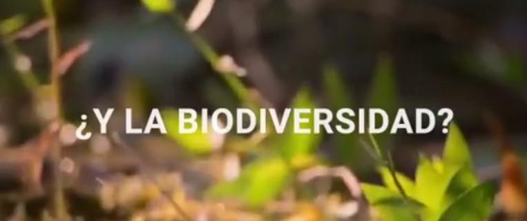 y la biodiversidad
